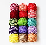 LE PAON 9g Size 8 Cotton Balls 1215Y Size 8 Strand Cotton Floss Embroidery 15 Balls All Different Colors pearl Cotton Threads for Crochet Hardanger Cross Stitch Needlepoint Hand Embroidery (Suit 2)