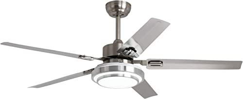 Ceiling Fan Ceiling Fan with Light