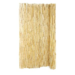 Forever Bamboo 72L x 16W in. Peeled Reed Fencing - 2 Pack