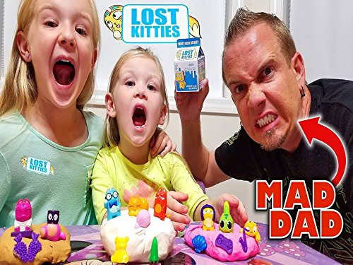 (Lost Kitties Toy Scavenger Hunt! Crazy Dad Hides Our New Toys!)