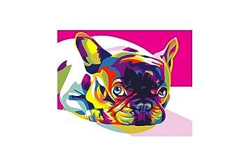 Artventura Regenbogen Französische Bulldogge Mini Malen Nach Zahlen