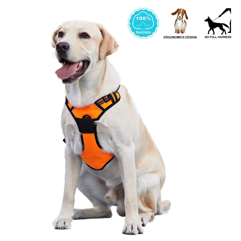 orange Xlarge orange Xlarge ANWA Walking Dog Harness No Pull Dog Vest Harness Durable, Dog Running Harness Reflective XLarge orange