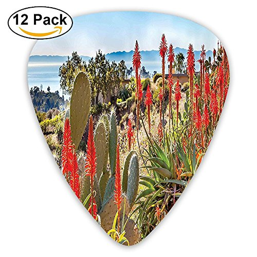 Newfood Ss Mountains With Sea View Flowers And Cactus Plants Guitar Picks 12/Pack Set