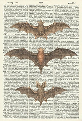 GOTHIC BATS ART PRINT - STEAMPUNK ART PRINT - ART PRINT - Vintage Art Print - Halloween Illustration - Picture - Vintage Dictionary Art Print - Wall Hanging - Home Décor - Book Print - Wall Art 410Df