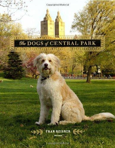 Central Park Garden - 8