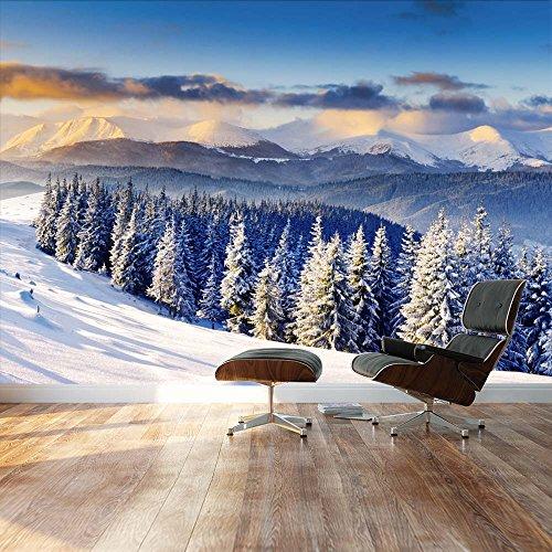 Snowy mountain silent winter scene Landscape Wall Mural