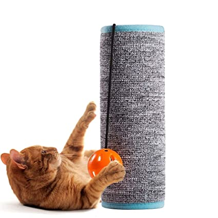 Sensational Amazon Com Nicrew Cat Scratching Mat Scratching Post For Interior Design Ideas Tzicisoteloinfo