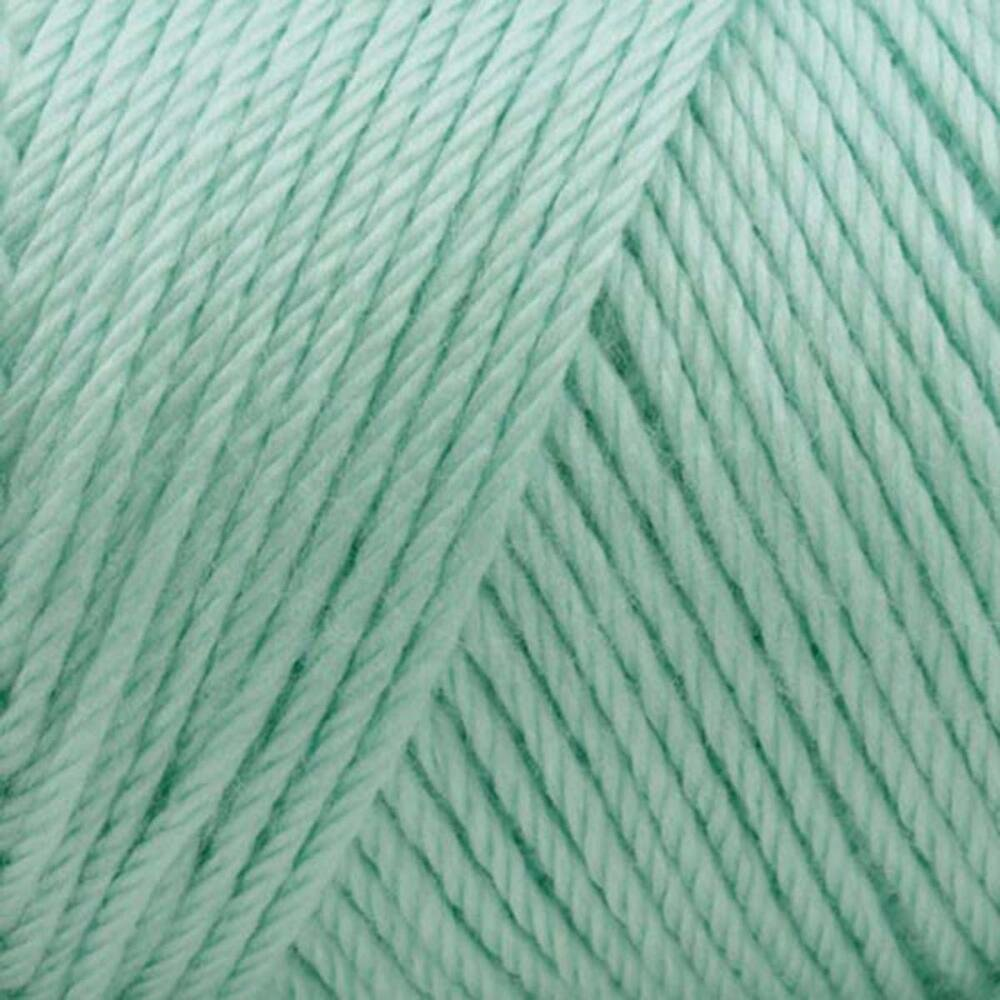 Bulk Buy: Caron Simply Soft Yarn Solids (3-Pack) Soft Green H97003-9739 by Caron Bulk Buy (Image #2)