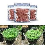 PerfectPrice 1 PC Aquarium Seeds Water Grass Mini Leaf Live Plant Fish Tank Decoration Landscape