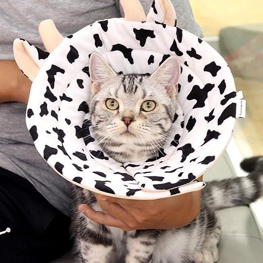 YUEBAOBEI Conos De Recuperación para Mascotas/Collar De Protección ...