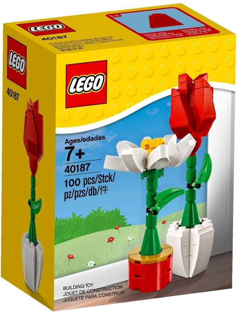 Amazon Lego Flower Display 40187 100 Piece Set Toys Games