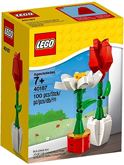 Amazon Lego Flower Display 40187 100 Piece Set Toys Games