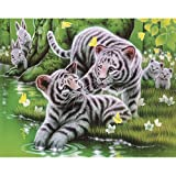 DIY 5D Animal Dog Wolf Cat Tiger Turtle Diamond Painting,Jchen(TM) Home Decor Craft 5D DIY Diamond Painting Kit Pasted DIY Diamond Painting Cross Stitch (G: 30x25cm)