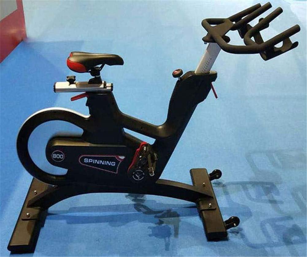 Lcyy-Bike Bicicleta de Spinning para Interior con Resistencia ...