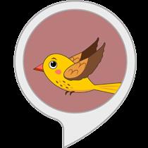 Pet My Bird