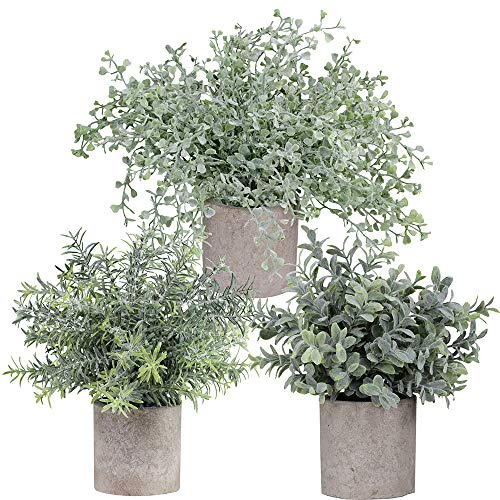 Winlyn Mini Potted Plants Artificial Flocked Eucalyptus Boxwood Rosemary Greenery in Pots Faux Potted Herbs Small Houseplants 8.8