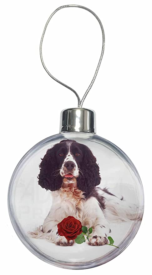 Springer spaniel xmas gifts for wife