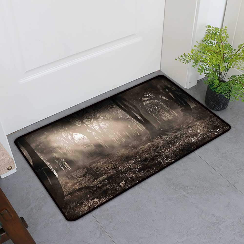 TableCovers&Home Welcome Door Mat, Gothic Indoor Doormats for Office, Photo of Dark Forest Scenery with Sunbeams and Fog Vintage Nostalgic Colors Fantasy Art (Brown, H36 x W60)