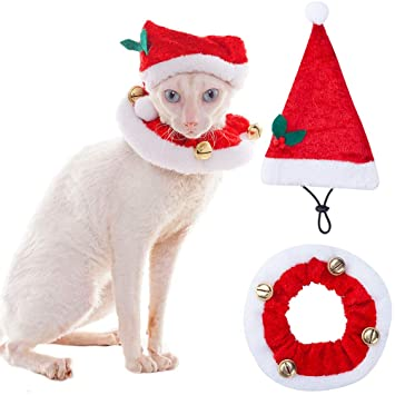 SCENEREAL Christmas Cat Costumes Santa Hats and Collar for Cats Small Dogs  Tiny Pets X- - SCENEREAL Christmas Cat Costumes Santa Hats And Collar For Cats