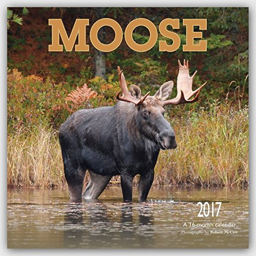 Moose 2017 Square Wyman Moose Calendar
