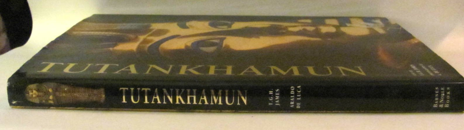 Tutankhamun ebook