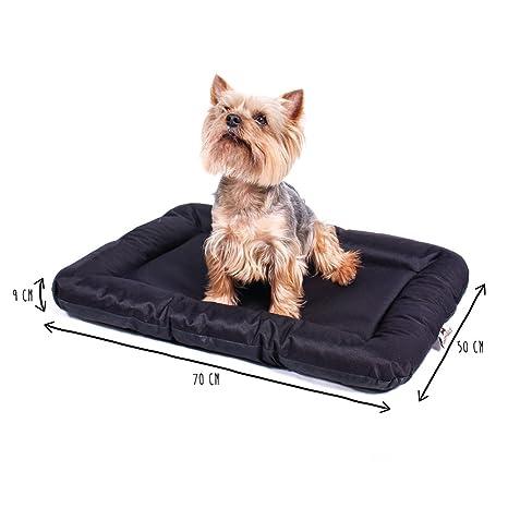 ANIMALY Cama para Perros Impermeable y antiarañazos, Perros Cojín Adecuado para Uso en Exterior,