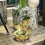 NCYP Artificial Driftwood Planter Resin Flower Pot Large Sculpture Succulent Air Plants Multilayer Irregular Hallow Out 4 Pots Rustic 3 Layers Trunk Stump for Decoration No Plants