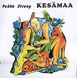 Kesaemaa by Pekka Streng