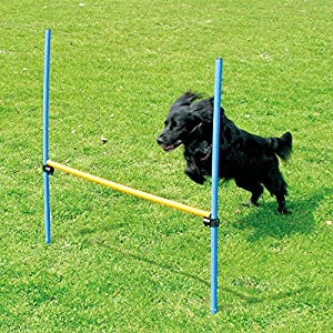 PAWISE Pet Dogs Outdoor Games Agility Exercise Training Equipment Agility Starter Kit Jump Hoop Hurdle Bar 29