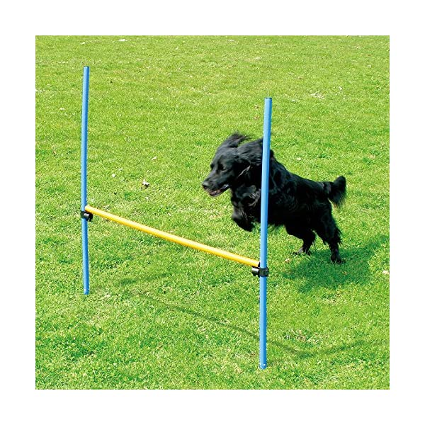 PAWISE Pet Dogs Outdoor Games Agility Exercise Training Equipment Agility Starter Kit Jump Hoop Hurdle Bar 1