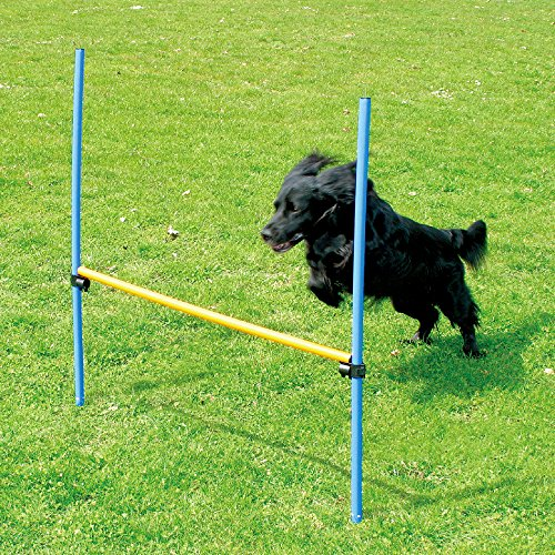 PAWISE Dog Hurdle Set