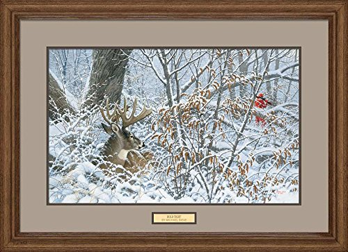 Hold Tight - Whitetail Deer Framed Limited Edition Print by Michael Sieve