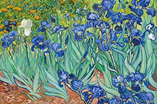 Vincent Van Gogh Irises 1890 Dutch Post Impressionist Landscape Painting Art Print Mural Giant Poster 54x36 inch