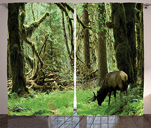 Ambesonne Rainforest Curtains, Roosevelt Elk in Rainforest Wildlife National Park Washington Antlers Theme, Living Room Bedroom Window Drapes 2 Panel Set, 108 W X 84 L Inches, Forest Green
