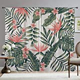 Mugod Tropic Flower Blackout Window Curtains Tropical Dark Green Leaves of Palm Trees