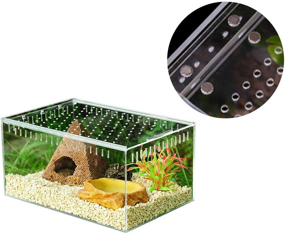 terrario para Lagarto Serpiente Rana S//L Caja de Reptiles de acr/ílico Transparente para Tanques de cr/ía de Reptiles winnerruby ara/ña