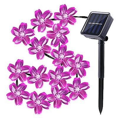 Qedertek Cherry Blossom Solar String Lights