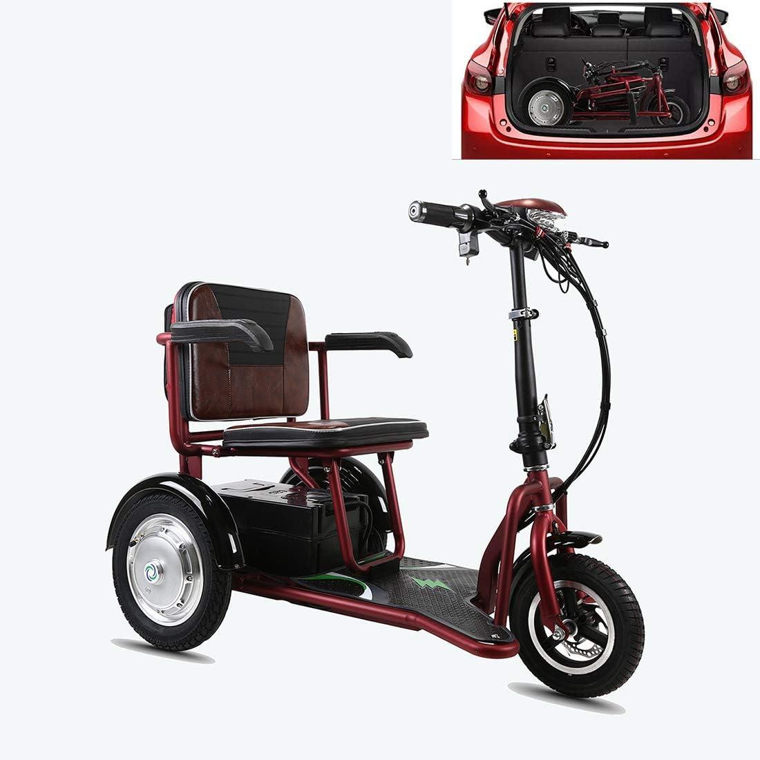 XCBY Scooter EléCtrico De 3 Ruedas Personas con Movilidad Reducida/Adultos/MinusváLidos/Discapacitados 350w 20 Km/H 40KM