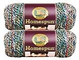 Bulk Buy: Lion Brand Homespun Yarn (2-Pack) (Painted Desert #790-407)