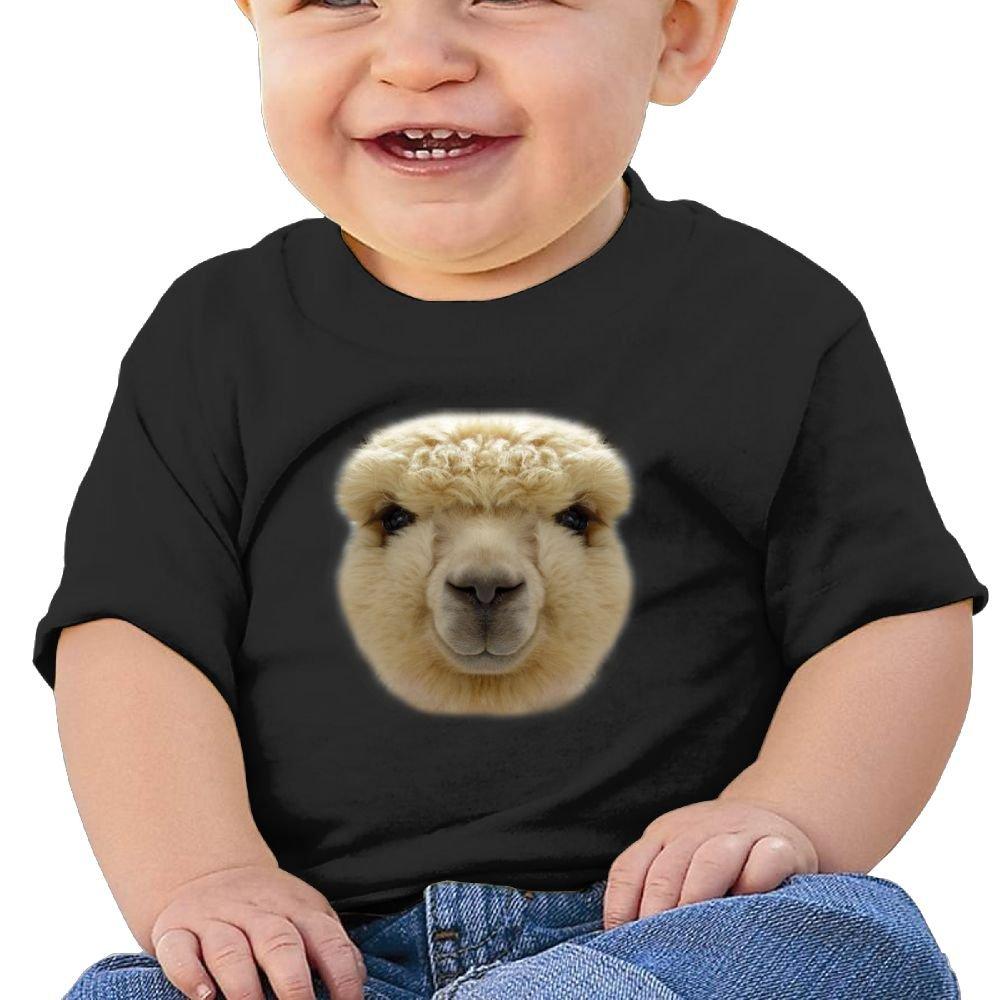Birthday Gift Big Face Alpaca Sleeve Short Shirts Baby Boys