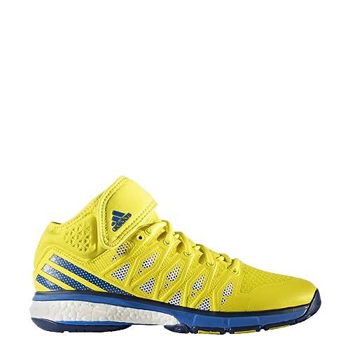 scarpe adidas volley uomo