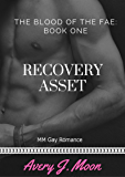 Recovery Asset (The Blood of the Fae Book 1)
