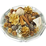 "Homeford FGR000000BBSVASP Vanilla Spruce Botanical Blend Fragrance Potpourri, 6"", Metallic Gold"