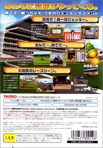 Gallop Racer 6 -Revolution- [Japan Import]