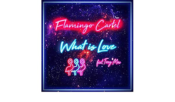 What Is Love (feat. Tony Mac) by Flamingo Cartel on Amazon ...