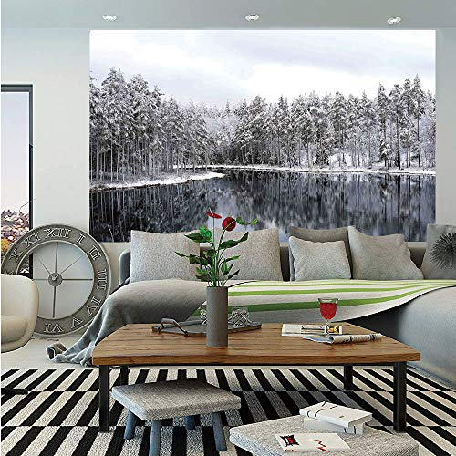 Reflections Elite Panel - Woodland Decor Huge Photo Wall Mural,Lake Surrounded by Snow Covered Trees on a Cold Winter Day in Finland Reflections,Self-Adhesive Large Wallpaper for Home Decor 100x144 inches,