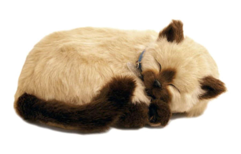 Perfect Petzzz Katze, Plüsch, Siamese the Breathing Puppy