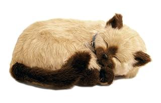 Perfect Petzzz Gatto Siamese il cucciolo che respira the Breathing Puppy