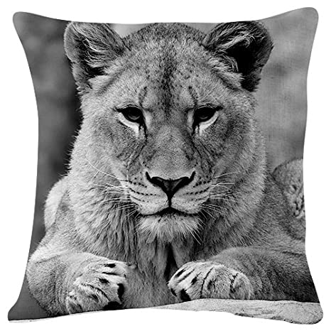 Amazon.com: PUPBEAMO Lion Lioness Sit Predator - Throw ...