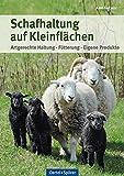 Schafhaltung auf Kleinflächen: Artgerechte Haltung, Fütterung, eigene Produkte